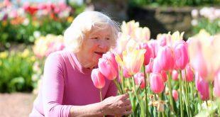 Évezd az életet nyugdíjas háziasszonyként!