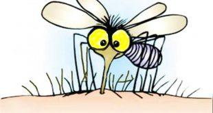Milyen légfrissítő űzi el a szúnyogokat?