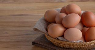 Élelmiszerbiztonság – erre figyelj oda idén húsvétkor!